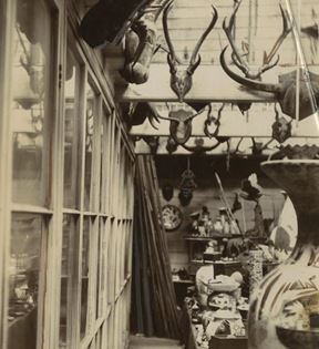 Charles Jamrach's Exotic Menagerie